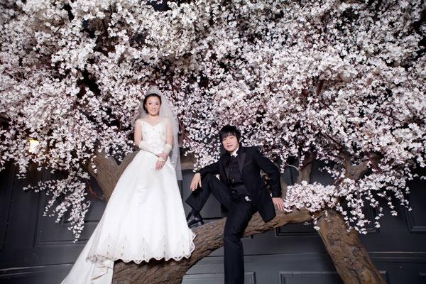 Liu Gang's Wedding Fantasy