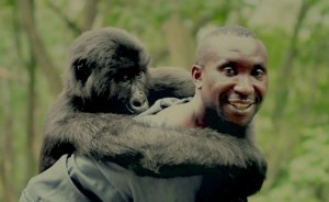 Virunga, winner of the 2014 Zelda Penzel Award (and Academy Award nominee).