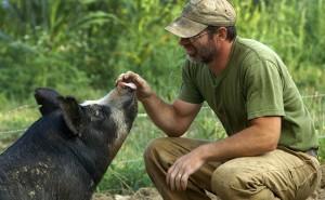 THE LAST PIG (HIFF 2017)