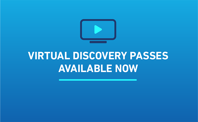 Unlock HIFF28 with a Virtual Discovery Pass