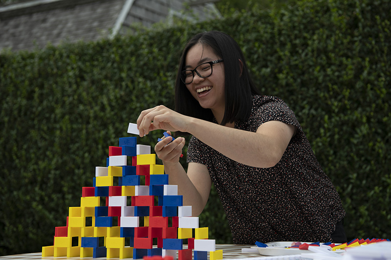 LILY building dominoes 800